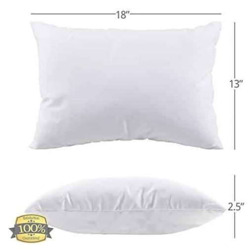 Best Toddler Pillow (INCREDIBY SOFT - 100% HYPOALLERGENIC) No Pillowcase Needed! Allergy Free - White Microfiber Finish 13x18 - Provides Great Back & Neck Support for Any Toddler, Kid, or Child