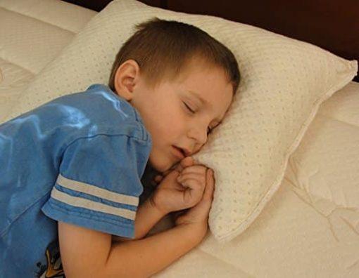 Snuggle-Pedic Toddler and Kids Pillow