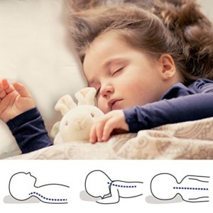TILLYOU Toddler Pillow with Pillowcase for Kids Toddlers Age 2+ Baby Bed Pillows for Sleeping 100% Hypoallergenic Cotton Travel Pillow Insert 15x20, Standard Loft Large